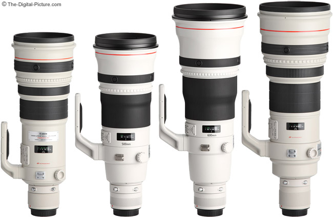 Canon EF 500mm f/4L IS II USM Lens Compared to other Canon Super Telephoto Lenses with Hoods