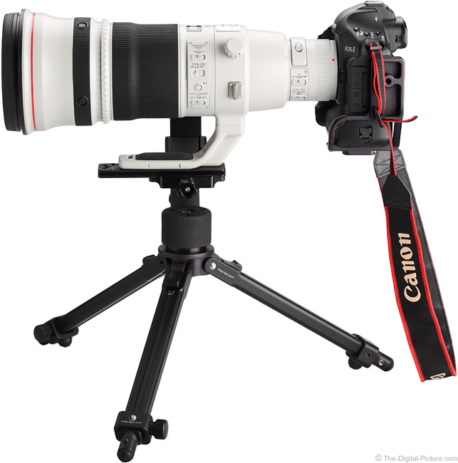 500 L II IS Side View on Canon EOS-1Ds Mark III DSLR Camera