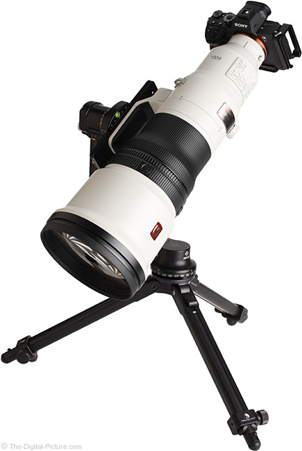 Sony FE 600mm f/4 GM OSS Lens Angle View