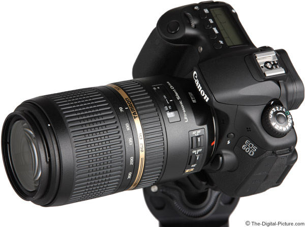 On Canon EOS 60D - Angle View